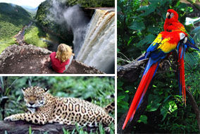 beautiful guyana